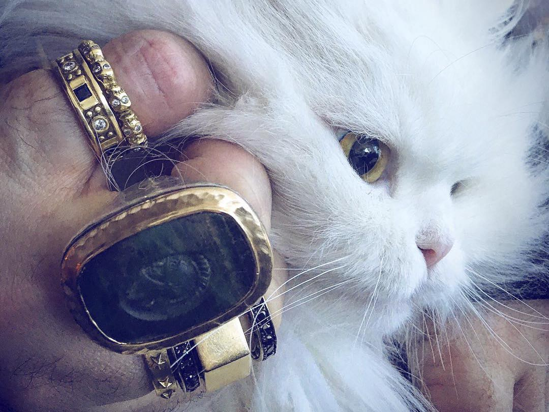 Image of designer rings stacked on hand petting cat.