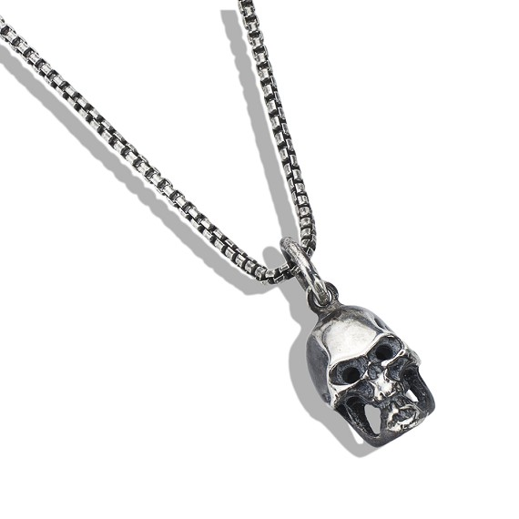 Silver Skull on Silver Men's Necklace
